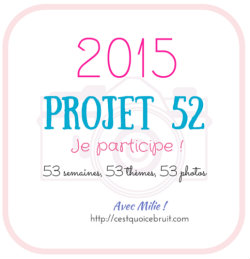 Projet52-2015-logo-cqcb-250