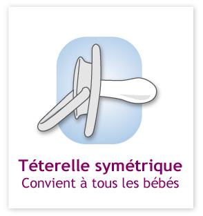 teterelle_symetrique_zoom